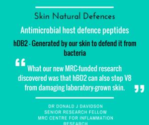 Skin defences against staph bacteria protease v8